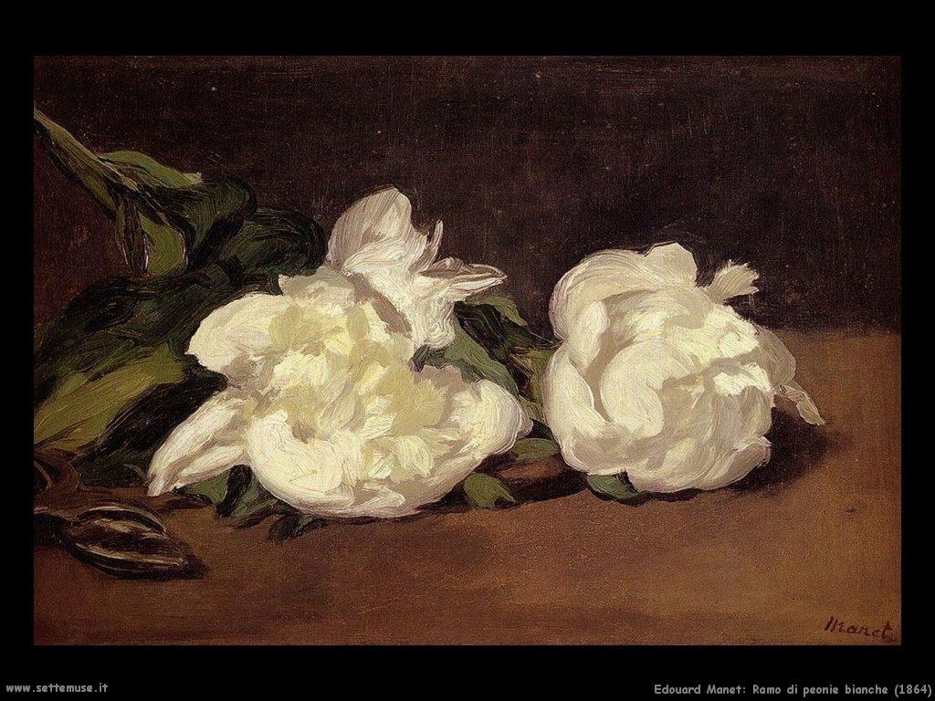 Edouard Manet, Ramo di Peonie bianche, 1864